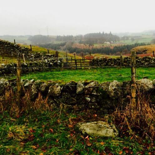 Peden Stone Mid Linthills 3
